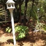 Sabal's Garden